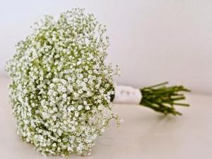 Ý nghĩa tuyệt vời của những đóa hoa baby trắng mỏng manh