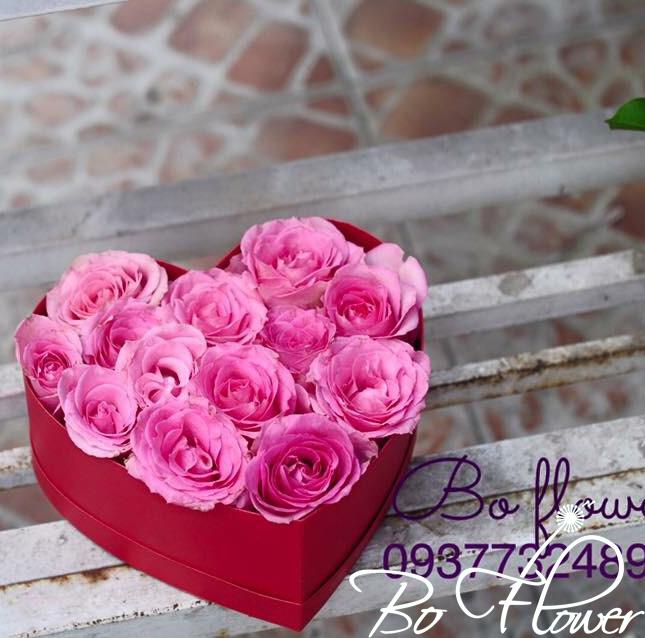 Hoa hộp trái tim 01